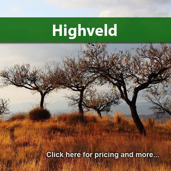 Highveld Package