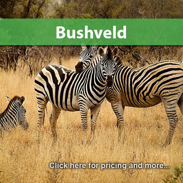 Bushveld Package